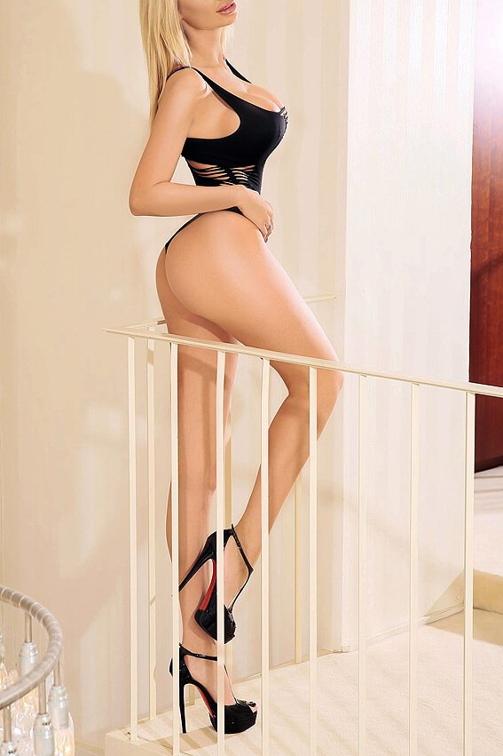 norway escort agency cologne